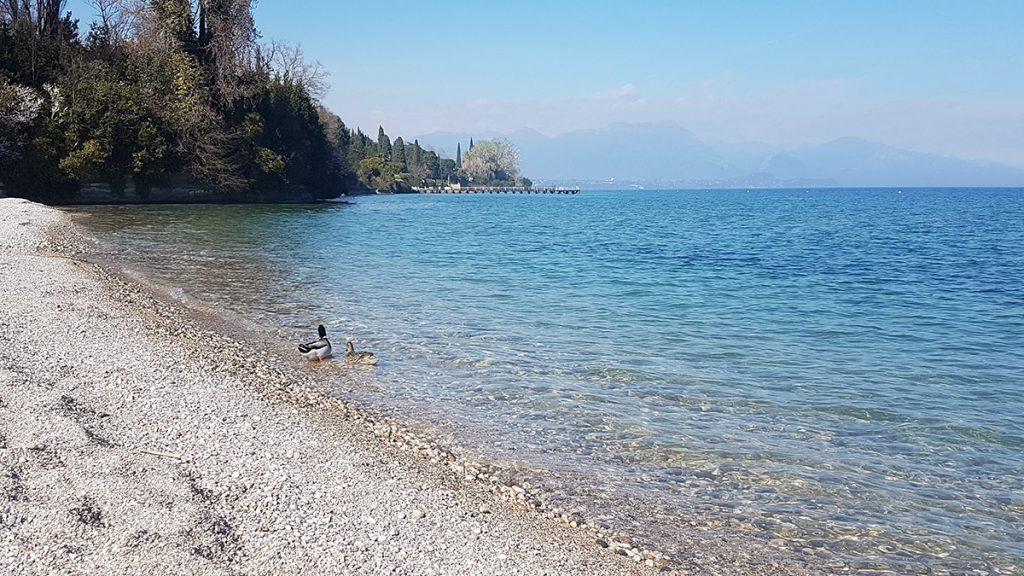 Spiaggia di sassi e lago
