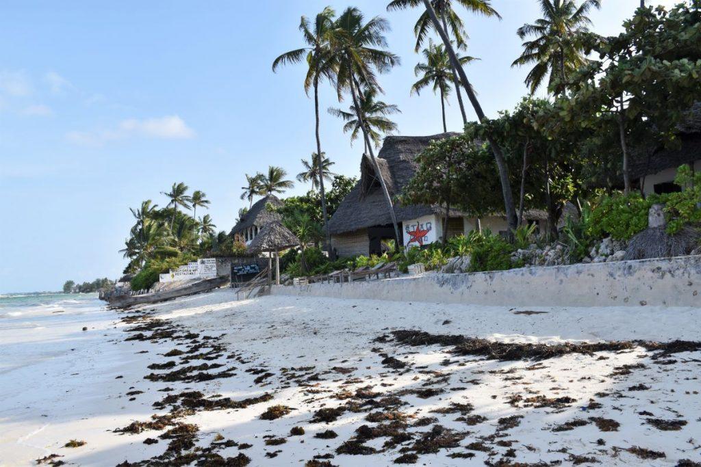 Zanzibar, ristorante sulla spiaggia